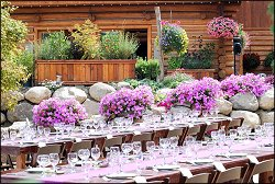 Wedding Location - Tahoe Tree Company
